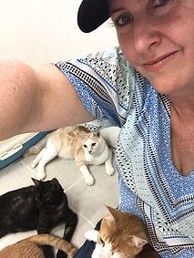 meg hogan, business coach, whitsundays, bowen, cat shelter, thailand, soi dog, animal hospital, animal rescue,