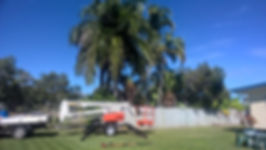 Property Maintenance, Bowen Tree & Yardworx, Eugene Arboit, Bowen, Gardening, Whitsundays, Burdekin, Ayr, Collinsville, Tree Service, Mow Service, Rubbish Removal, Yard care, hedges, tree lopping, for sale, presentation block, real estate Bowen, investment, property care, affordable, reasonable rates, fully insured, de-nutting, pruning, diesel fitting, farm machinery, tractor repairs, gutters, outdoor services, bobcat, tip truck, tree lop, tree climb, commercial property,