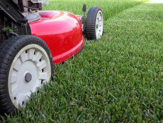 What is a good size cut to mow grass?