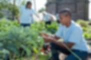 Académie de la Paix et du Développement Durable