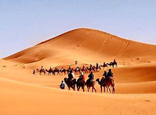 Morocco Sahara Desert camel trekking.jpg