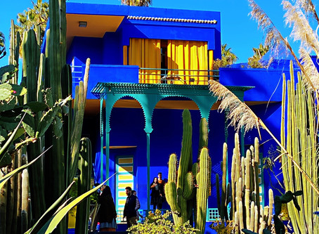 Majorelle Garden Morocco - A Calming Charm In The Craziness