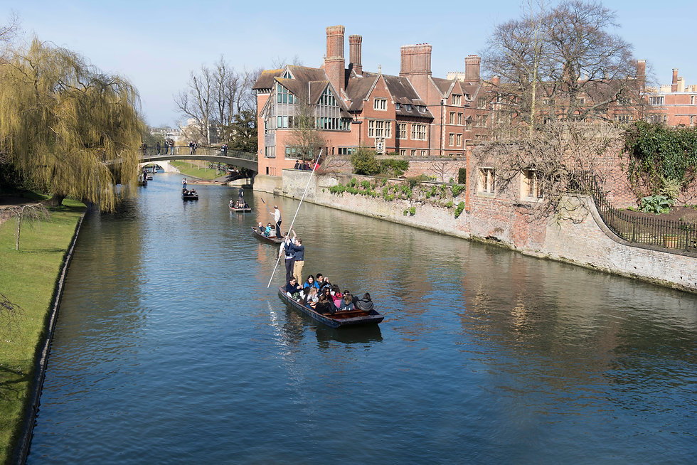 Sping in Cambridge-17.jpg