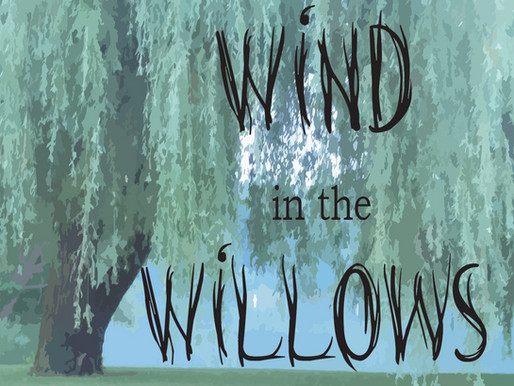 Wind in the Willows                                  2019-2020 Season