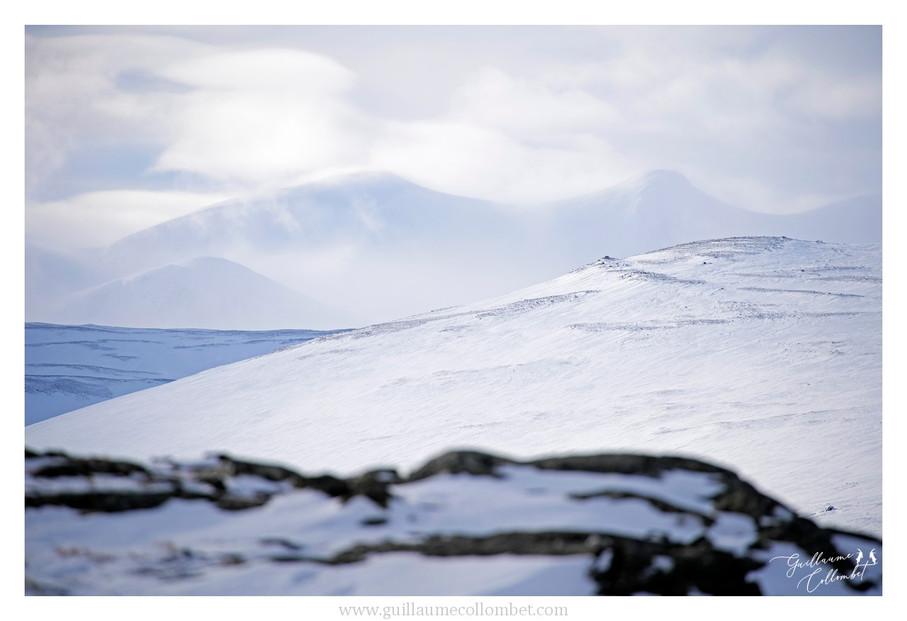 Montagnes du Dovrefjell