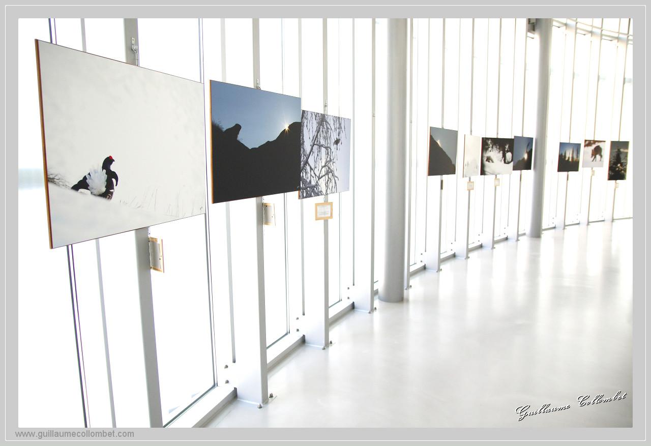 """Expo """"Soleil de Glace"""""""