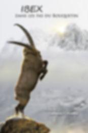 Ibex, film sur le bouquetin des Alpes