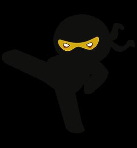 ninja_4.png