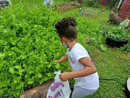 KIDS GROW 2 SUMMER CAMP PACKAGE