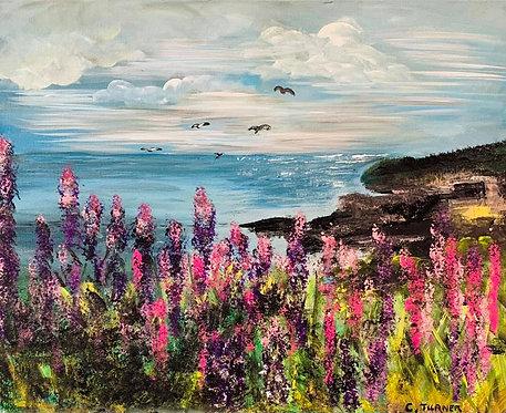 Scot's Bay