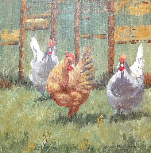 The Hen Yard