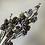 Thumbnail: Zasněžená větvička šišek