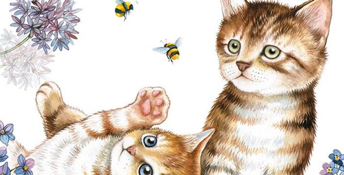 Ubrousky kočičky