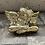 Thumbnail: Zlatý andílek Lene Bierre