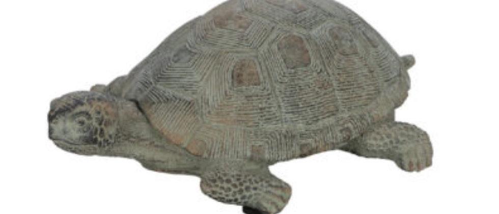 Betonová želva