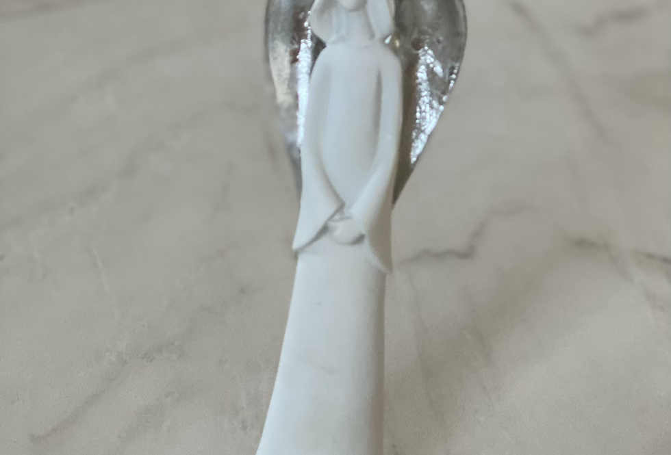 Andelíček se stříbrnými křídly