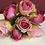 Thumbnail: Růže