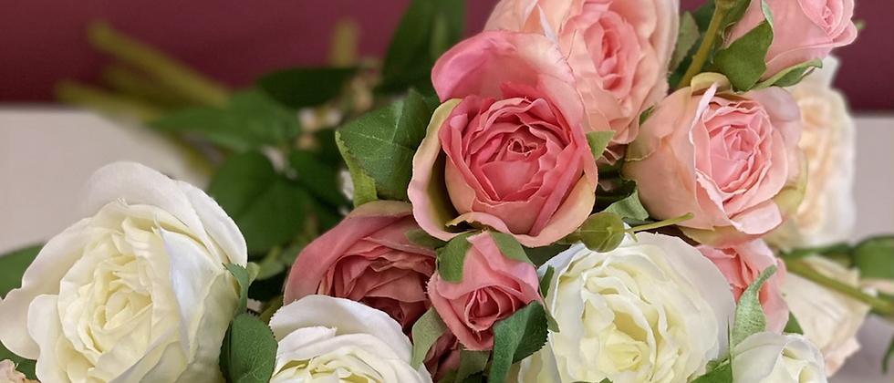 Růže trsová