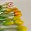 Thumbnail: Tulipány poupata