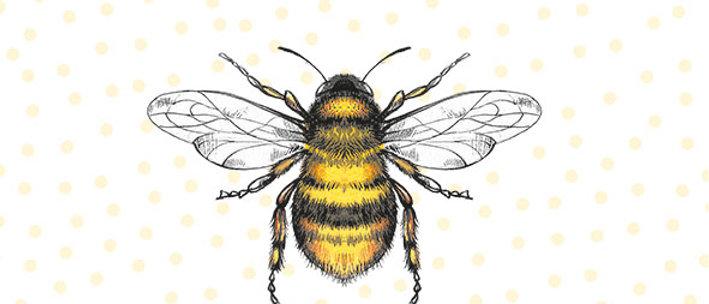 Ubrousky včelky