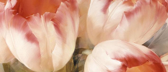 Ubrousky červený tulipán