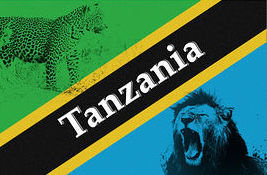flag-of-tanzania-with-silhouette-of-lion