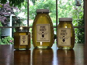 Jars of honey.JPG