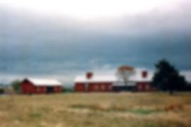 Guill Ranch - Washington County Texas 1989