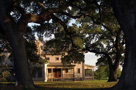 Siff Ranch - Washington County, TX 2010