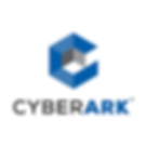 bulwarx cyber security cyberark