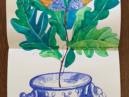 sketchbook of portuguese trees (cont.)