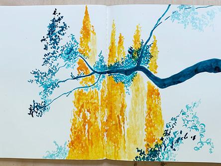more sketchbook trees