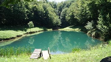 Villa Jelenic by Bertovic-Šmitovo jezero