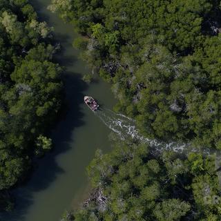 Pristine waterways.png