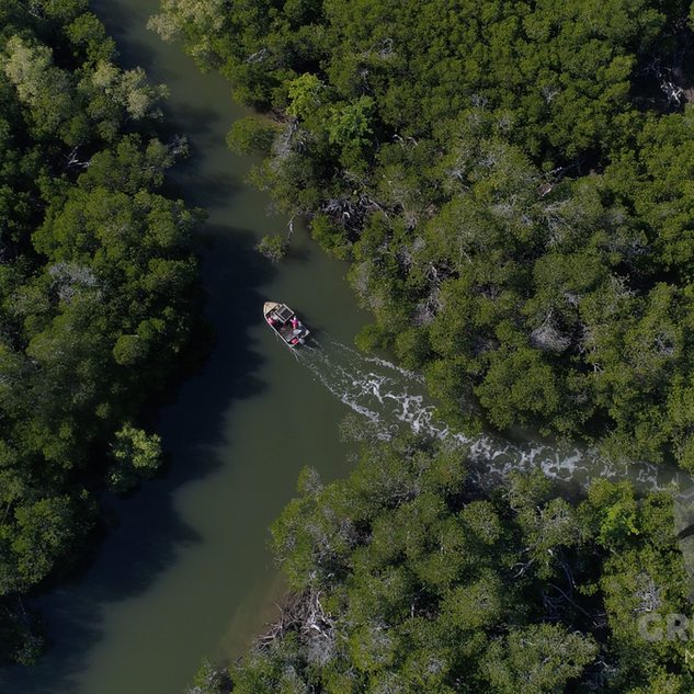 Pristine waterways.png