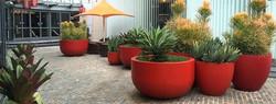 geniş-dış-dekor-bahçe-saksı-çiçeklik