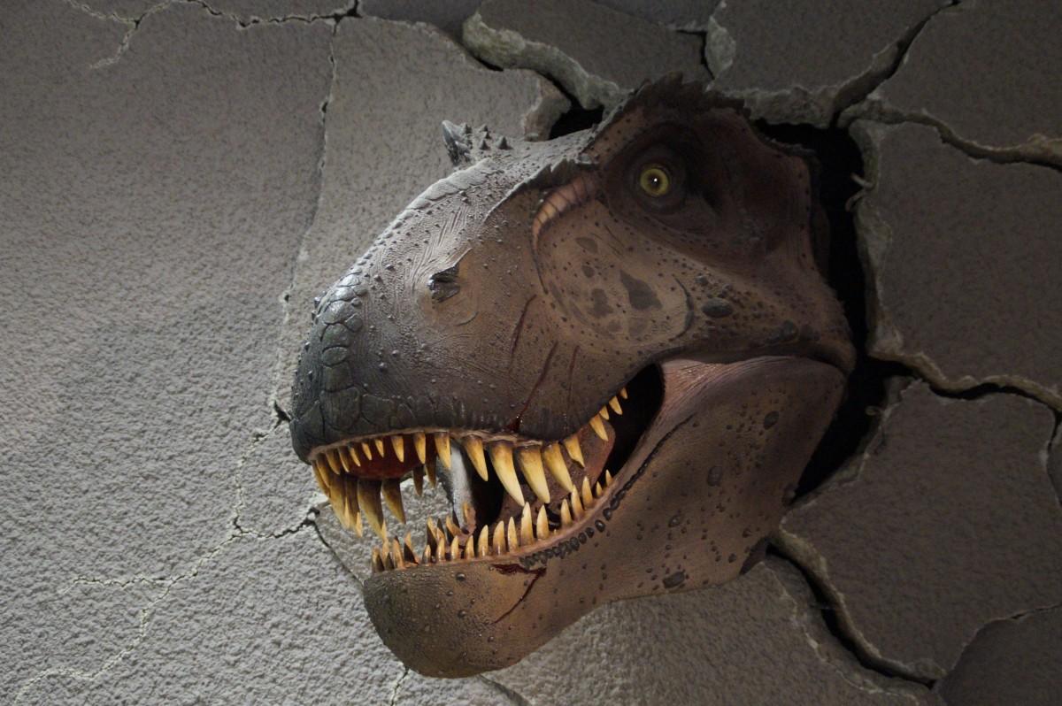 dinozor-fiber-ctp-model-heykel-3d-reklam