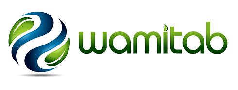 WAMITAB.png