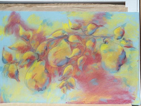 Jackie Barrette Original Large Oil Pastel of Pears