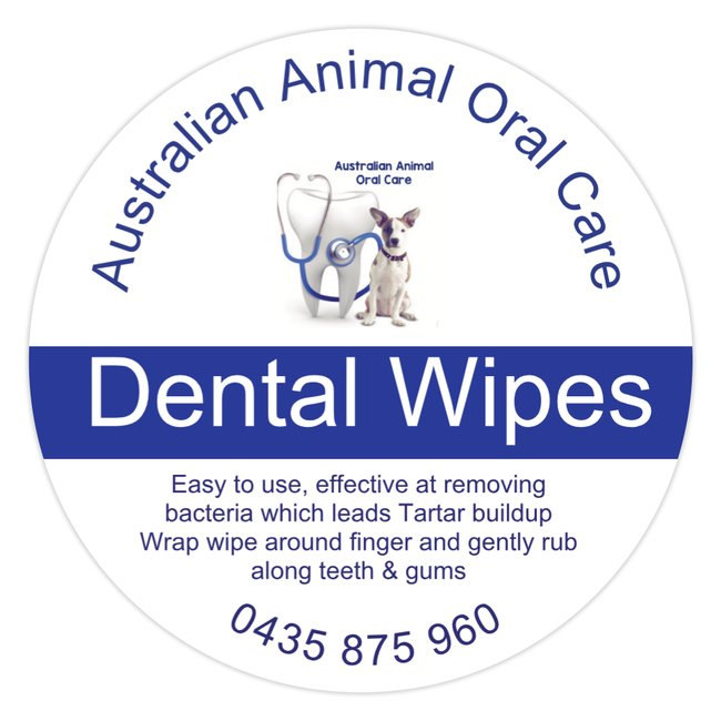 Dental Wipes.jpg