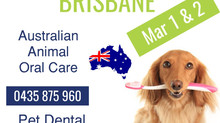 Queensland Pet Dental