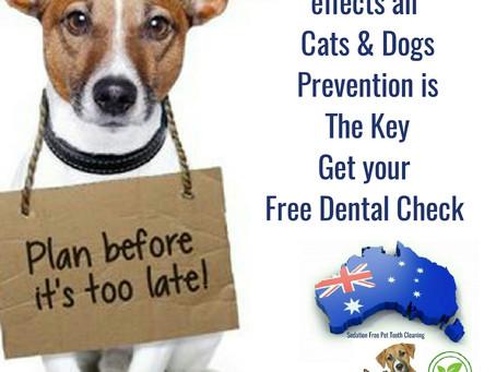 Dental Clinic Locations Interstate