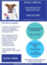 Screenshot_20200207-123535_Samsung Inter