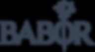 2000px-Babor_logo.svg.png