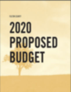 2020 proposed budget.png