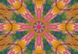 Kaleidoscopic Images (169) (Transient Be
