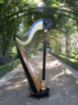 Harpist Mt Eliza black and gold harp