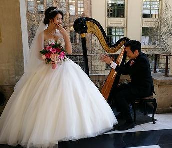 Harpist harp music for weddings melbourne