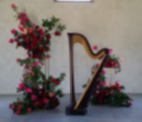 Harpist harp music in Melbourne