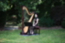 Harp in the Dandenong Ranges